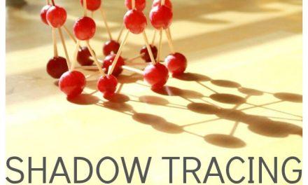 Traçage de l'ombre avec des Sculptures de Raisin